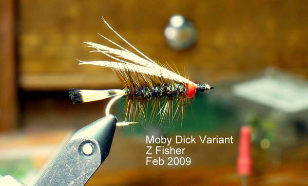 Moby Dick Variant